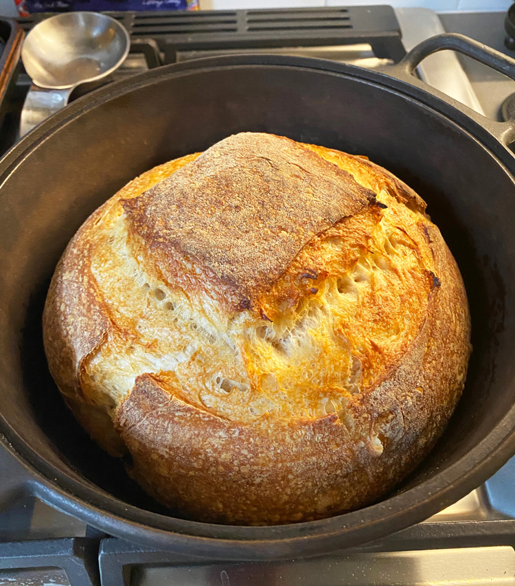 A just-cooked sourdough bread boule in a Dutch oven