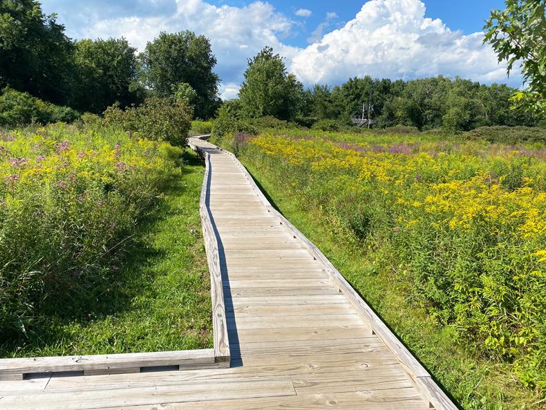 The Appalachian Trail boardwalk path in Vernon, NJ