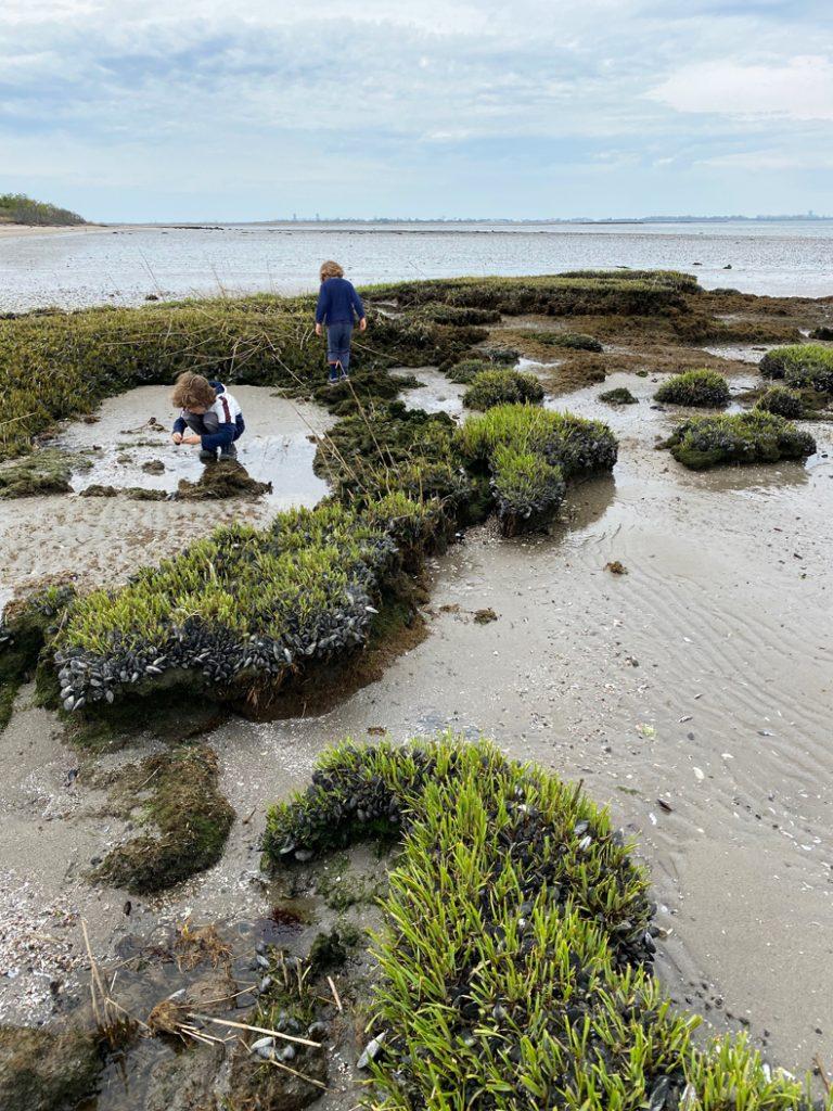 Two kids exploring tide pools at Jamaica Bay Wildlife Refuge