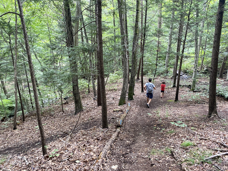 A family hikes the forested trail of Ketchum Sanctuary in Westchester county, New York (Bedford).