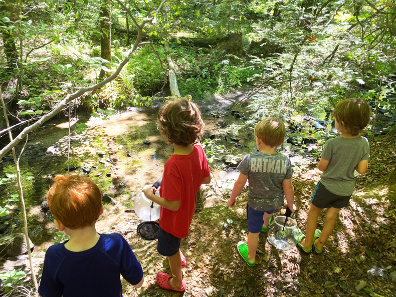 Kids hunting for frogs in Fuller Mountain Preserve