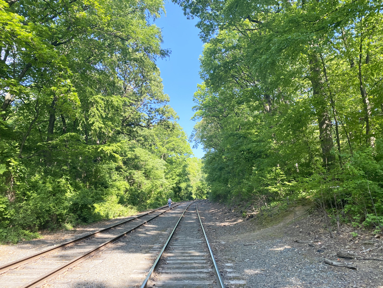 Old Montauk branch railroad tracks that cut through Forest Park, Queens
