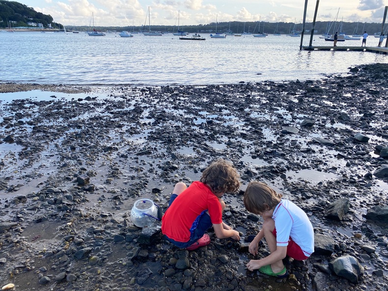 Kids crouch looking for crabs on Mercadente Beach in Long Island