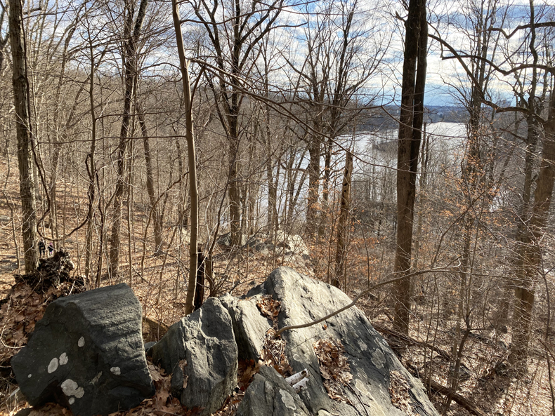 View through late winter woods to Silver Lake preserve in Westchester, New York