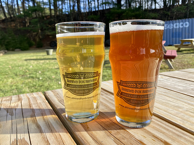 Two beers at Shrewd Fox Brewery in Eldred, NY