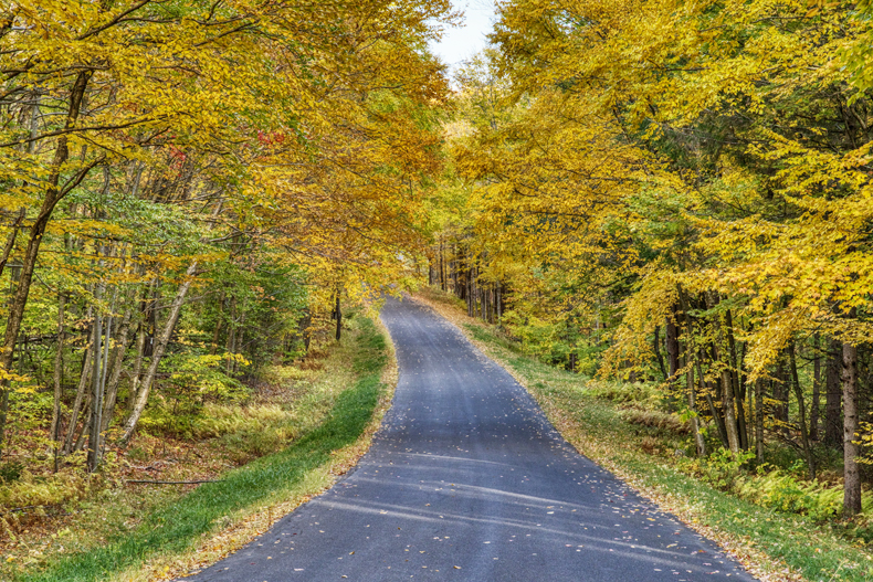 An empty country road surrounded by colorful autumn trees in the Sullivan Catskills region of New York state.