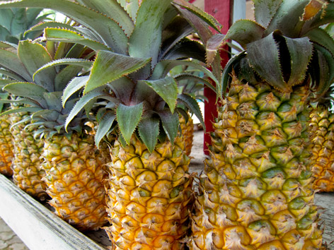 Pineapple stand, Antigua