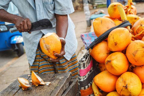 Orange-hued king coconuts in Colombo, Sri Lanka