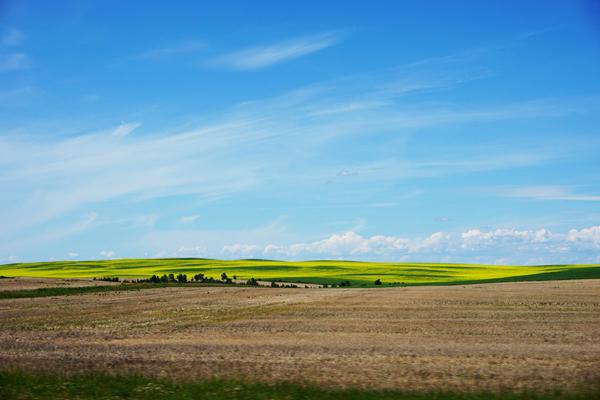 Prairie fields near Saskatoon, in Saskatchewan, Canada