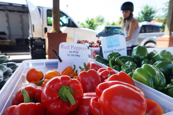 Red peppers outside at the Saskatoon farmers market