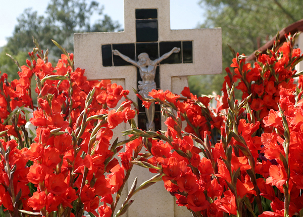 Flowers in a cemetery for the Day of the Dead, in Oaxaca