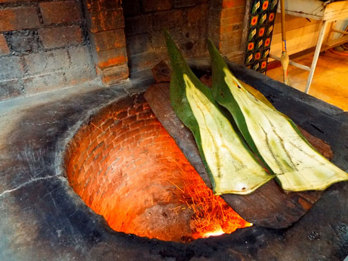 Heating agave leaves for barbacoa in Mexico City