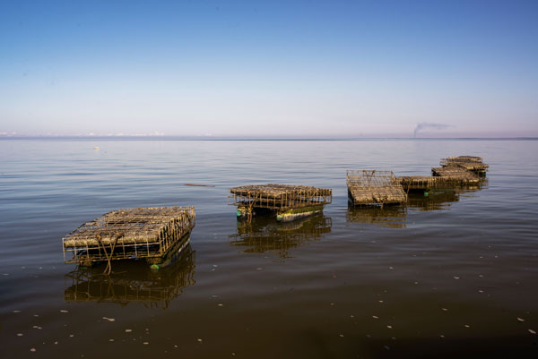 Oyster cages in the Gulf off the coast of Alabama