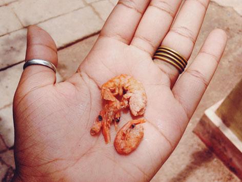 Dried shrimp for som tam, Thai papaya salad
