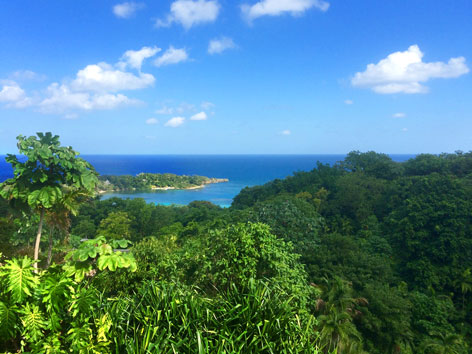 Port Antonio, Jamaica view, where the jungle meets the sea