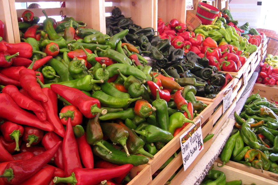 Pueblo chiles in New Mexico