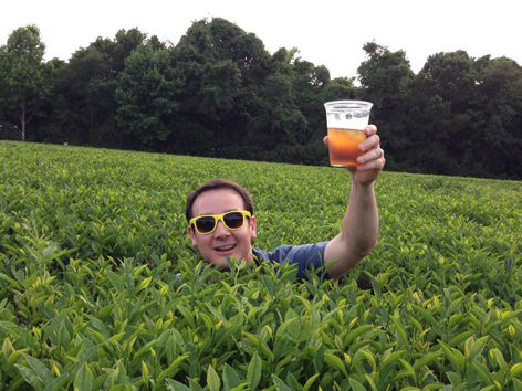 Sweet tea at a tea plantation in Charleston, SC