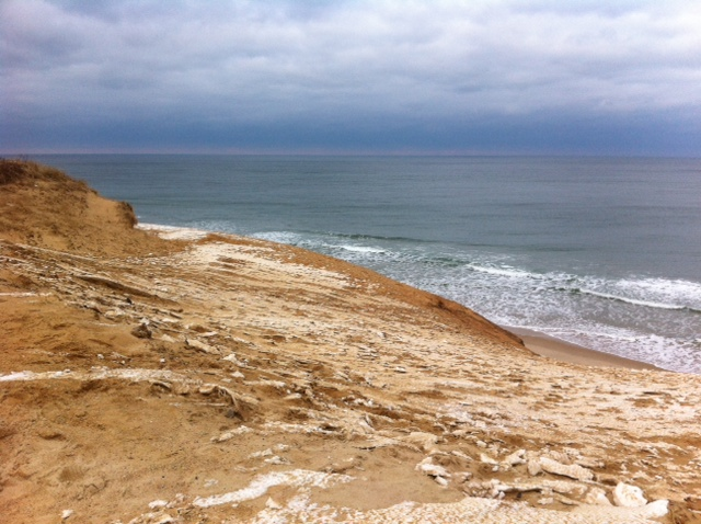 Wellfleet, Cape Cod, Massachusetts, during winter