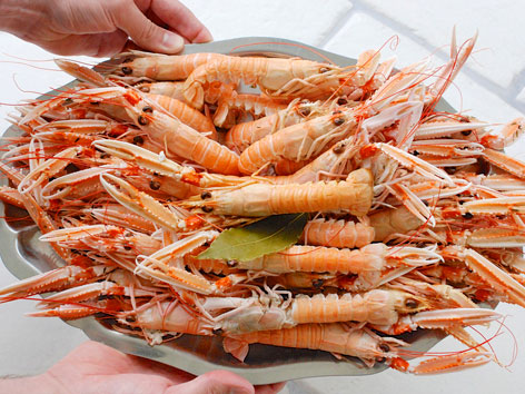 A plate of local langoustines from Bar André in the Charente-Maritime region of France.