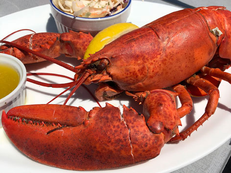 Whole lobster with butter and lemon from a restaurant on the South Shore of Nova Scotia