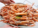 Local langoustines from Bar André in the Charente-Maritime region of France.