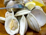 Local clam steamers, served at Tarks restaurant in Dania Beach, Florida