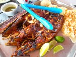 Tikinxic fish from Playa Lancheros on Isla Mujeres