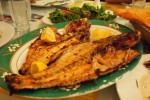 Fire grilled hamour fish
